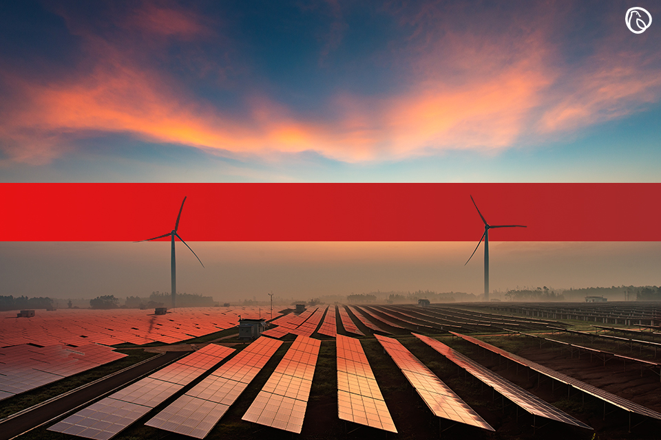 Kuwait shows interest in financing Sindh renewable energy projects