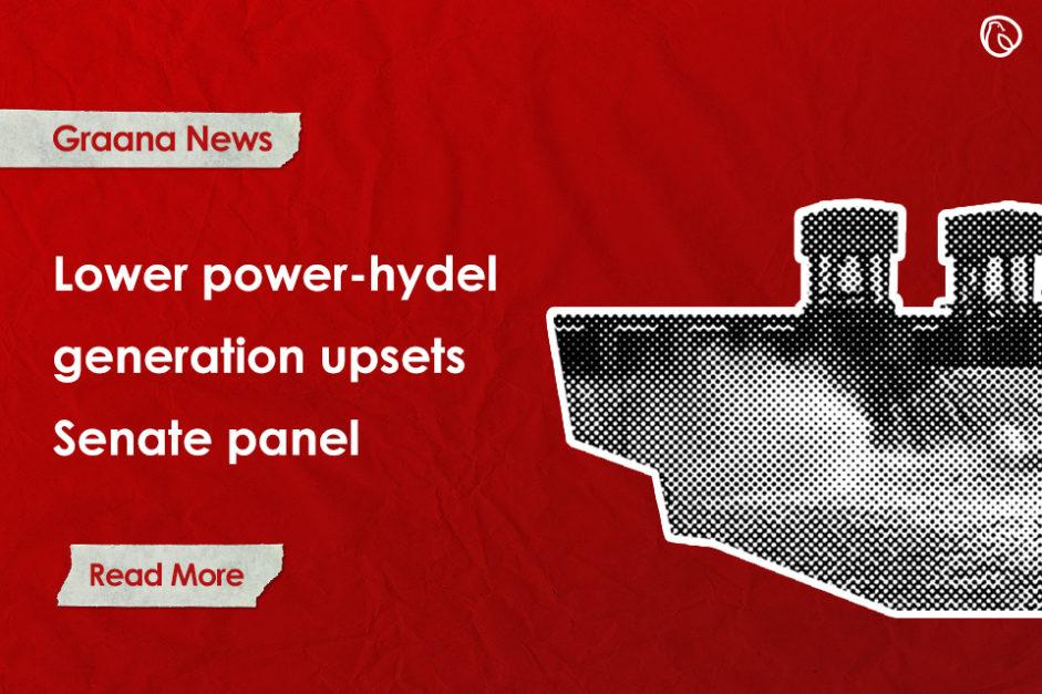 Lower power-hydel generation upsets Senate panel