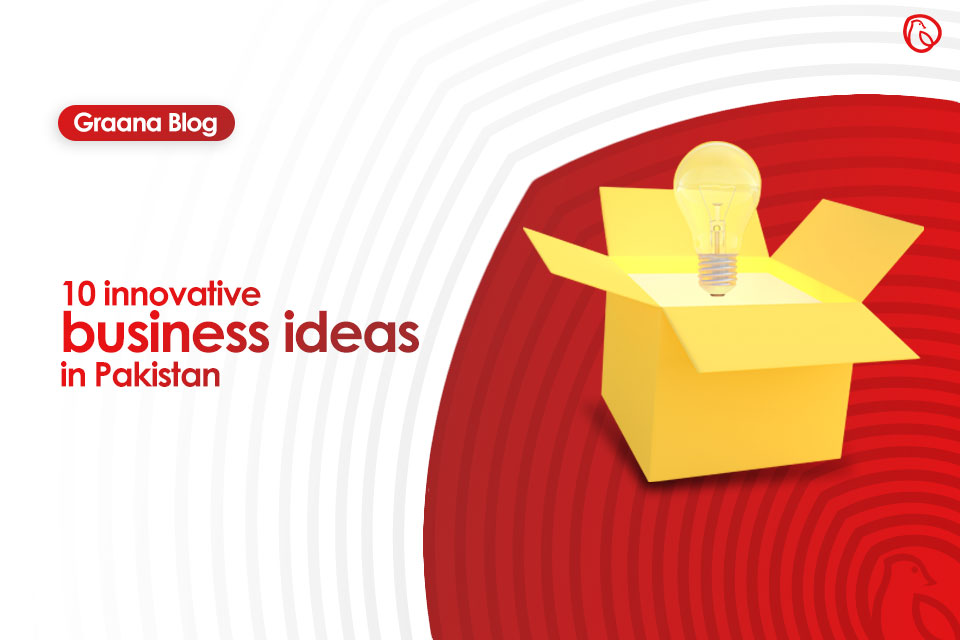 ten innovative business ideas in pakistan