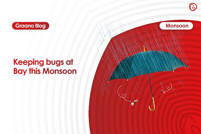 Keeping bugs at Bay this Monsoon
