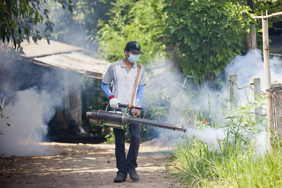Fumigation for dengue virus