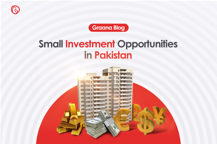 Top 12 Small Investment Opportunities in Pakistan