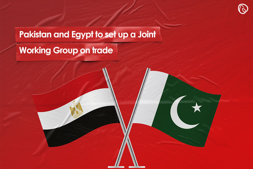 Pakistan and Egypt to set up a Joint Working Group on trade