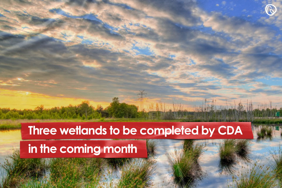 Three wetlands to be completed by CDA in the coming month