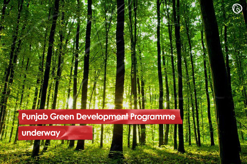 Punjab Green Development Programme underway