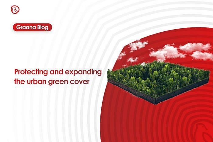 Protecting and expanding the urban green cover