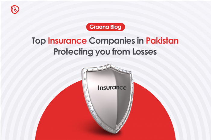 Top Insurance Companies in Pakistan - Protecting you from Losses