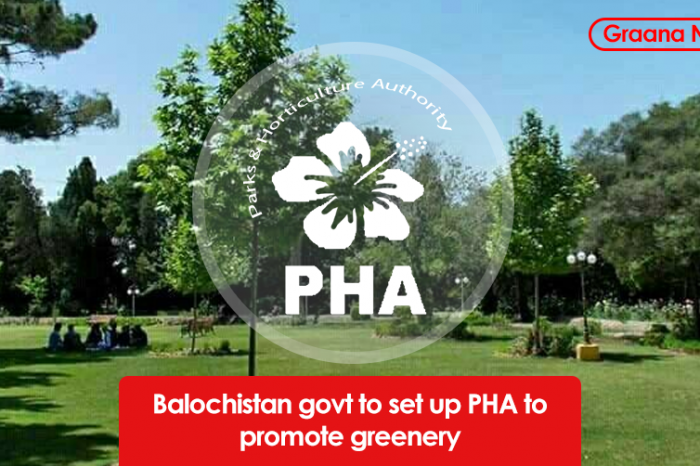 Balochistan govt to set up PHA to promote greenery