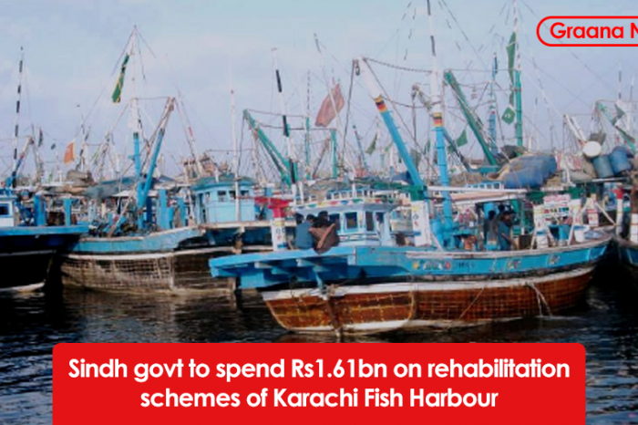 Sindh govt to spend Rs1.61bn on rehabilitation schemes of Karachi Fish harbour