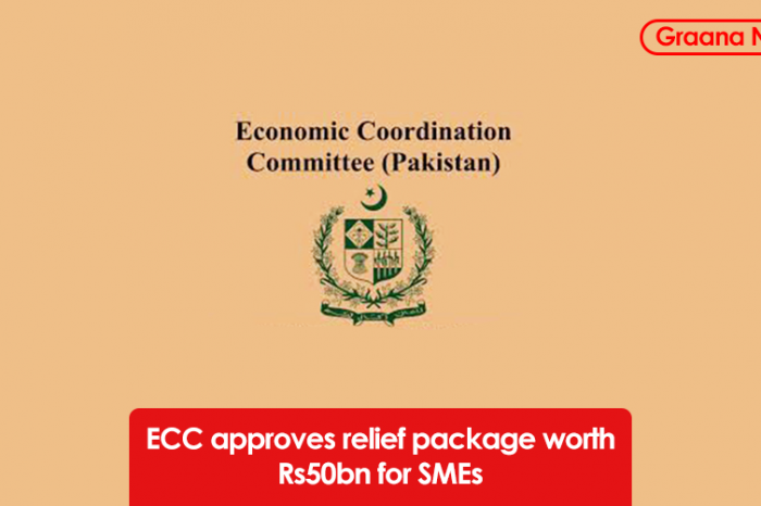 ECC approves relief package worth Rs50bn for SMEs