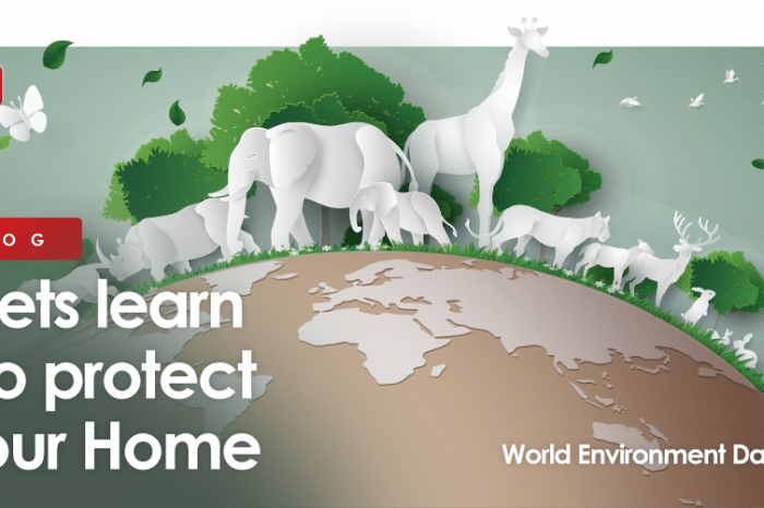 This World Environment Day lets learn to protect our Home