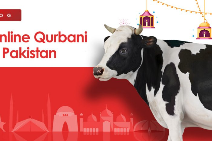 List of Online Qurbani Websites in Pakistan 2021
