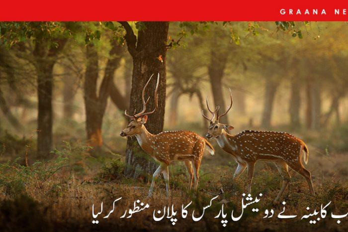 پنجاب کابینہ نے دو نیشنل پارکس کا پلان منظور کرلیا