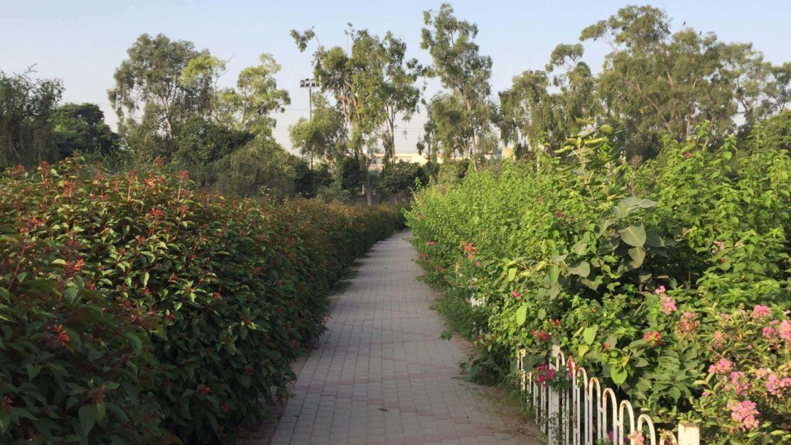 gulshan iqbal park in Lahore