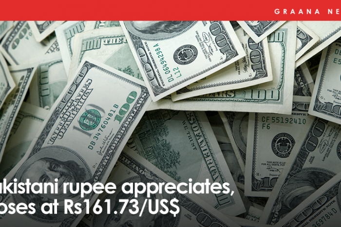 Pakistani rupee appreciates, closes at Rs161.73/US$