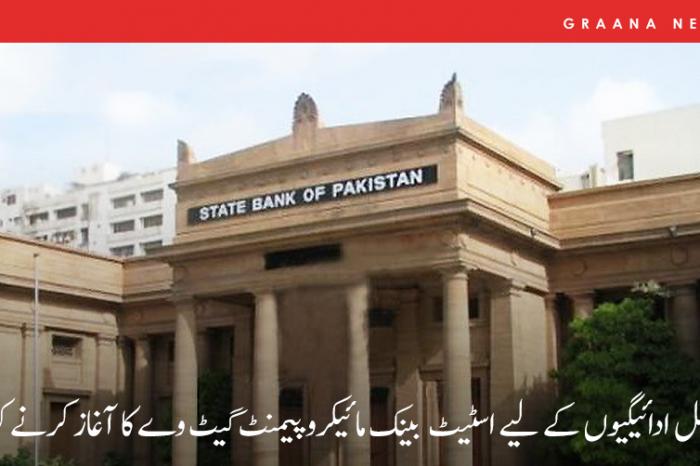 ڈیجیٹل ادائیگیوں کے لیے اسٹیٹ بینک مائیکرو پیمنٹ گیٹ وے کا آغاز کرنے کو تیار