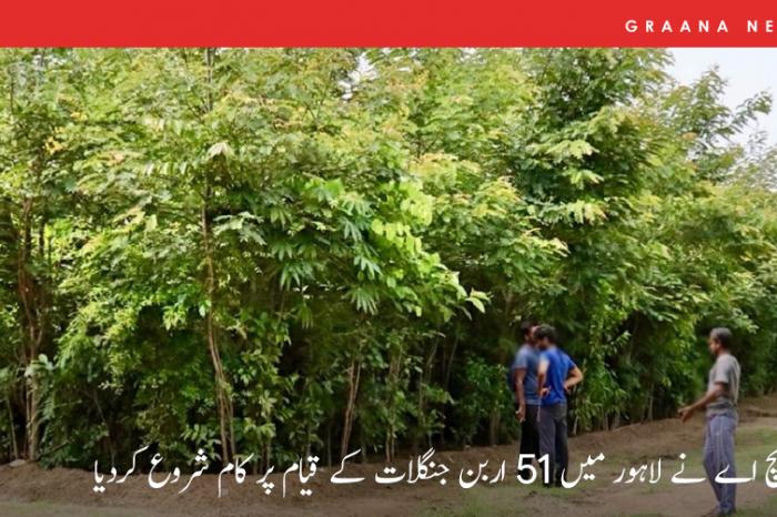 پی ایچ اے نے لاہور میں 51 اربن جنگلات کے قیام پر کام شروع کردیا