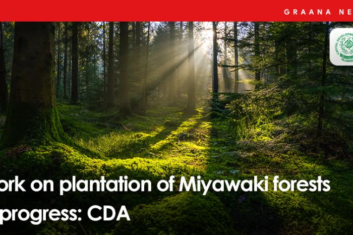 Work on plantation of Miyawaki forests in progress: CDA