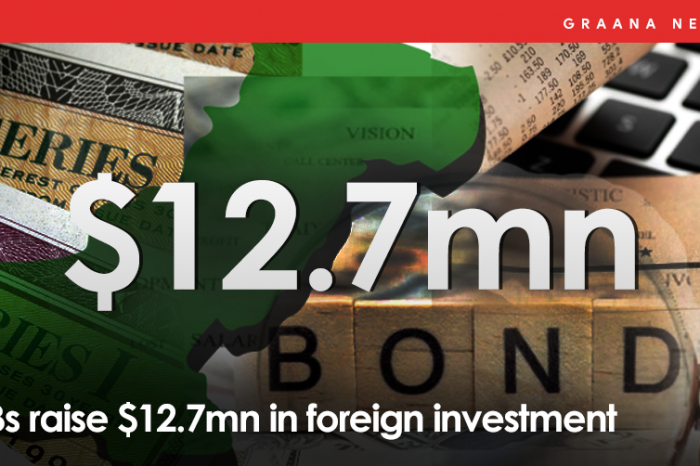 PIBs raise $12.7mn in foreign investment