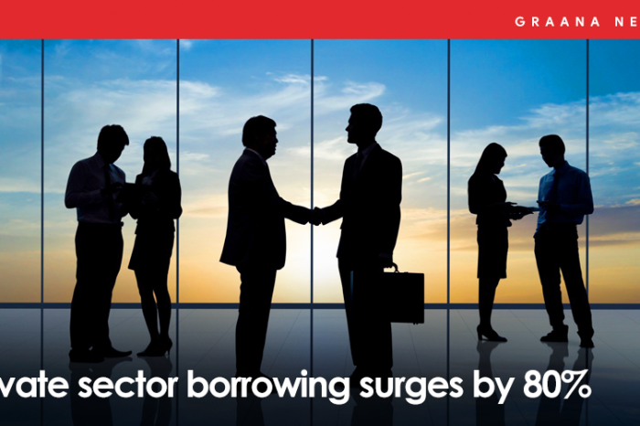 Private sector borrowing surges by 80%