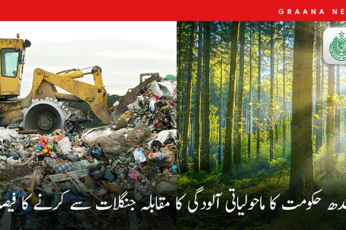 سندھ حکومت کا ماحولیاتی آلودگی کا مقابلہ جنگلات سے کرنے کا فیصلہ