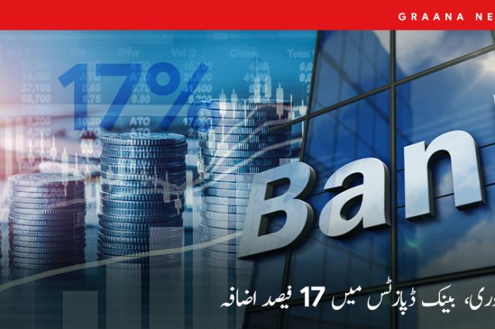 فروری، بینک ڈپازٹس میں 17 فیصد اضافہ