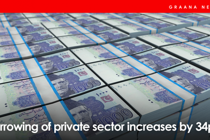 Borrowing of private sector increases by 34pc