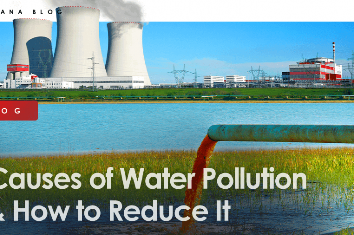 Causes of Water Pollution & How to Reduce It