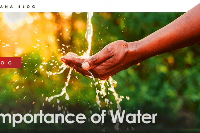 Importance of Water - Sources, Benefits and More