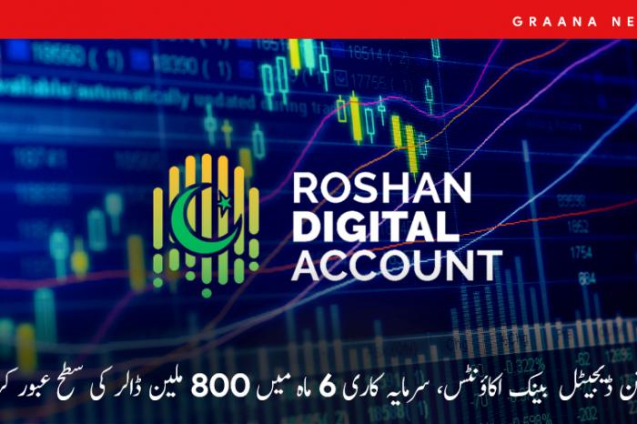 روشن ڈیجیٹل بینک اکاؤنٹس، سرمایہ کاری 6 ماہ میں 800 ملین ڈالر کی سطح عبور کر گئی