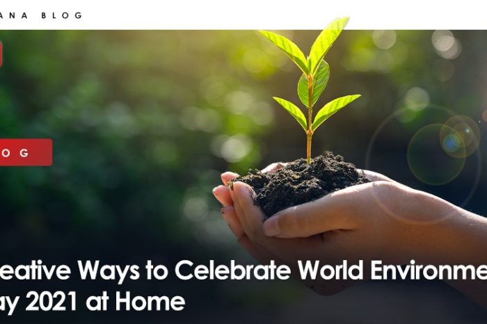 Creative Ways to Celebrate World Environment Day 2021 at Home