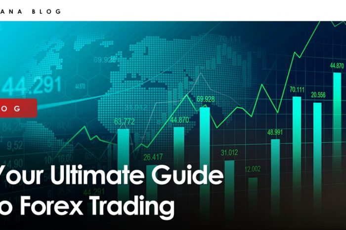 Your Ultimate Guide to Forex Trading