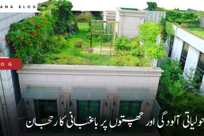 ماحولیاتی آلودگی اور چھتوں پر باغبانی کا رحجان