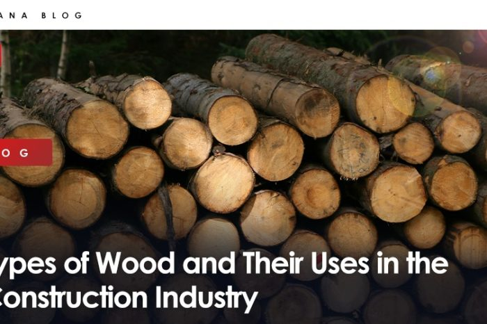 Types of Wood and Their Uses in the Construction Industry